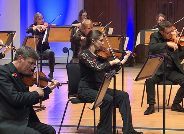 An image of the Royal Philharmonic Orchestra's string players